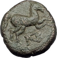 MARONEIA Thrace 400BC Authentic Ancient Greek Coin w HORSE & WINE GRAPES i64335
