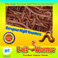 80 Live European Night Crawlers For Composting, Gardens, Lawns or Bait Worms