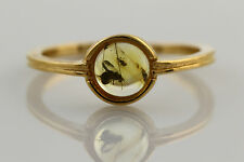 Fossil Insect FLY Genuine BALTIC AMBER Silver Gold Plated Ring 6.5 r160516-21
