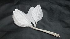"New listing Floral Crafts 1 Bunch of 12 White 2 1/2"" Rose Leaf / Leaves Picks"