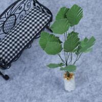 1//12 green banana white bottle Doll House Miniature Garden Accessories M7B1