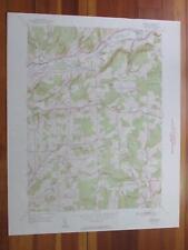 Brisben New York 1951 Original Vintage USGS Topo Map