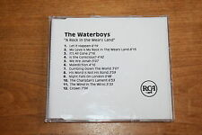 The Waterboys - UK promo CD / A Rock in the Weary Land / RCA acetate CD