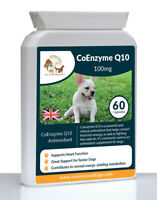 CoEnzyme Q10 Senior Dog Antioxidant Natural Supplement For Dogs Immune Support