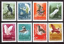 HUNGARY - 1959. Birds - MNH