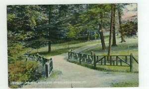 PA Wellsboro Pennsylvania antique 1908 Post Card - Bridge in Woodland Park