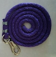 Poly nylon lead with bull snap purple