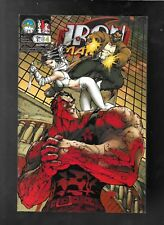 Iron and The Maiden 4 2007 Michael Turner cover D Direct Edition variant vf-nm