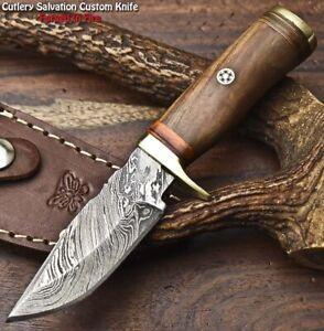 Rare Custom Hand Made Damascus Steel Blade Miniature Knife | WALNUT WOOD