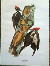 BEAUTIFUL SET OF 3 PRINTS BY ARTIST TOM DUNNINGTON~BY COTTAGE HILL WILDLIFE ARTS