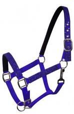 Blue Pony Size Nylon Neoprene Lined Halter w/ Glitter Overlay! New Horse Tack!