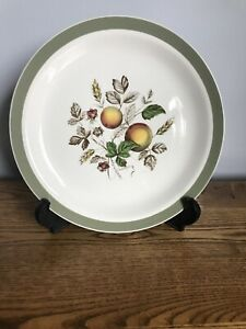 Hereford 1950s Alfred Meakin raspberries china replacement green band peaches Dinner plate vintage dinnerware Vintage