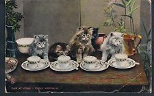 TUCK POST CARD IN KITTENDOM OUR AT HOME-EARLY ARRIVALS 1912 1/6 IN SET - KITTENS