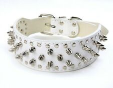 WHITE Metal Spiked Studded Leather Dog Collar Pit Bull Rivets L XL Large Breeds