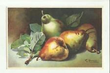 137899 stupenda cartolina artistica frutta di s. bonelli