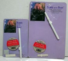 Set of 2 Beauty and the Beast Wipe-Off Memo Board-Mint