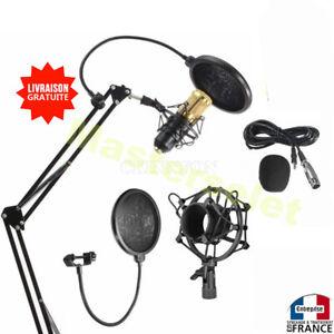 Microphone condensateur professionnel pour enregistrement studio