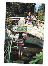 """Tropical Hobbyland, """"Pond at Hobbyland"""", Miami, Florida NW 27th Ave"""