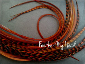 Feather Hair Extension 11 - 14 In Long (28-36cm) 10 Pc Ginger  Grizzly/Solid