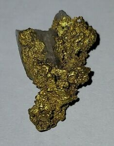 BIG Natural Crystalline California Gold Nugget w/ Quartz GOLD RUSH Placer Miner