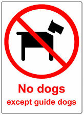 2 TRANSARENT Plastic No Dogs Self adhesive Signs. 100% Waterproof Stickers.