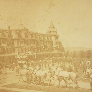 1888 Kilburn Stereoview 4818 Beauties Carnival & Horsemans' Delight Photo Horse