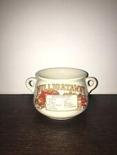 Mulligatawny Bowl Rare Vintage Soup Bowl 80s