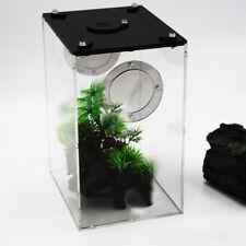 Terrarium de reptiles vivants de boîte de reptiles transparents pour le