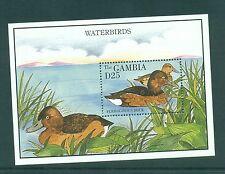 Gambia 1995 Ferruginous Ducks Water Birds Minisheet MNH SG 1984a