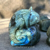 Natural Labradorite Hand Carved Chameleon Skull Quartz Crystal Healing 1pc
