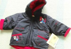 Peter Rabbit 0-3months Padded Jacket In Navy Blue