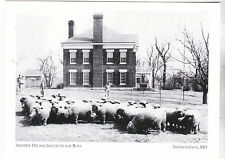 "*Postcard-""Andrew Drumm Institute For Boys""(Rams in Front) *Independence MO (A-8"