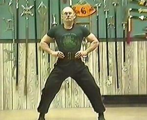 Green Dragon Studios Kung Fu STONE WARRIOR STRENGTH EXERCISE DVD