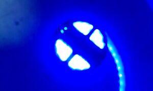 Fairy Lights 12 & 24 volt 5M Waterproof Flexible Gift String 300 LED Strip Light