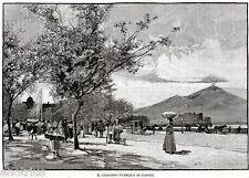 Napoli: Villa Comunale,Via Caracciolo,Castel dell'Ovo,Vesuvio.Stampa Antica.1892