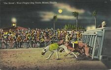 OLD VINTAGE WEST FLAGLER DOG TRACK MIAMI FLORIDA 1940 LINEN POSTCARD