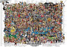 Wrestling mélange-the history of modern wrestling dans une image poster