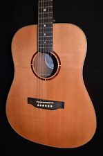 Luna Americana AMT 100 Dreadnought Acoustic Electric Guitar - Free Shipping!