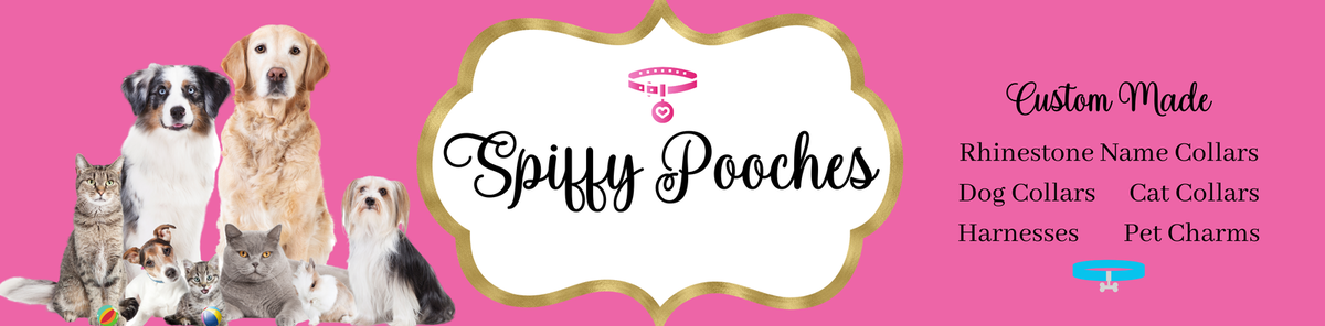 Spiffy Pooches Pet Collars