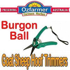 1 x Burgon & Ball Hoof Shears Footrot Shear Goats Sheep Alpaca Cutters Knife