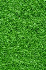 4x6ft Grass Nature Backdrop Family Photo Background Photography Clip Prop Studio