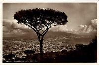 Napoli Neapel Italien s/w Postkarte 1935 Panorama da S. Martino Totale Baum Tree