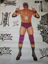 WWE WRESTLER ZACK RYDER FATHEAD LARGE REUSABLE VINYL WALL GRAPHICS,NEW
