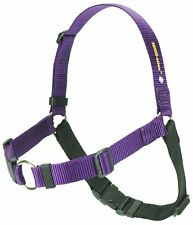 "Softouch Sense-ation No-Pull Dog Harness - M/L 1"" Purple"
