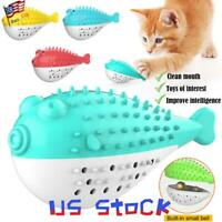 Pet Chew Toys Cat Catnip Toothbrush Fish Shaped Refillable Kitten Teeth Cleaning