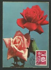 BULGARIA MK 1956 FLORA ROSEN ROSE ROSES MAXIMUMKARTE CARTE MAXIMUM CARD MC d6071