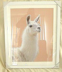 """TWO (2) Wall Hanging Aluminum Photo Frames White Poster Classic 32"""" X 26"""""""