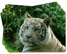 Siberian White Tiger Picture Placemats in Gift Box, AT-50P