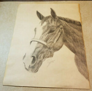 Vintage Original Pencil Drawing Horse Head White Blaze Wall Art Signed 1991