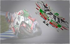 HONDA VTR 1000 SP2 CASTROL OIL COLIN EDWARDS WSBK 2002 GRAPHIC DECALS KIT